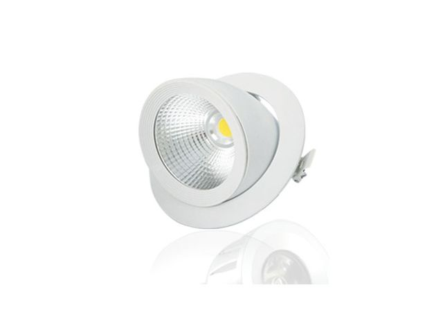 Spot LED COB Escargot 20W avec angle d'éclairage 45°_LED-FLASH